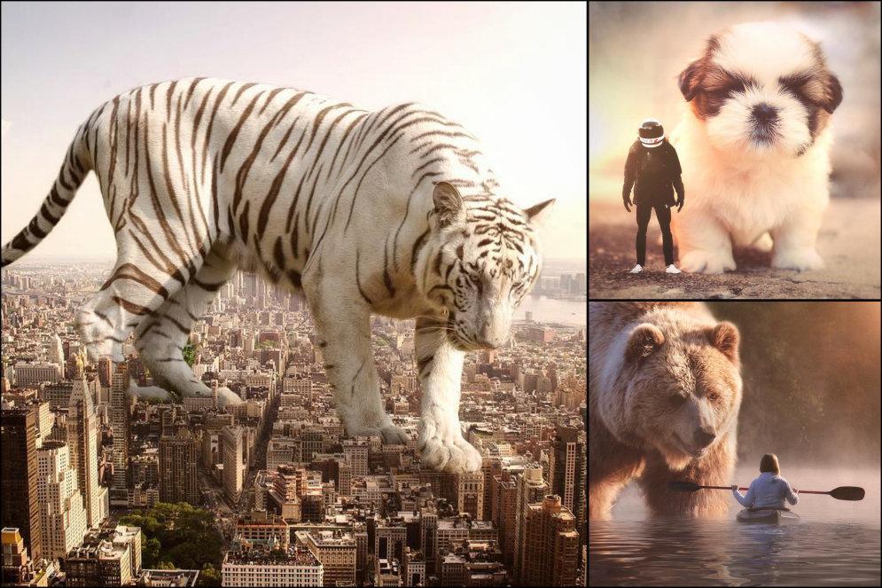 ФОТО. Как выглядел бы наш мир, если бы звери стали намного больше людей