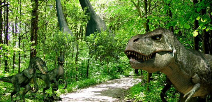 Izziņo 'Avārijas brigādes' atrakciju parka atklāšanas datumu un aicina pieteikties skolēnu grupas