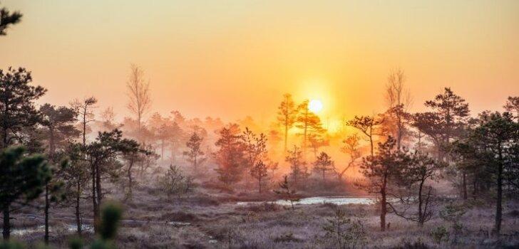 25 удивительных фактов о Латвии, которые вы могли не знать (по мнению британских СМИ)