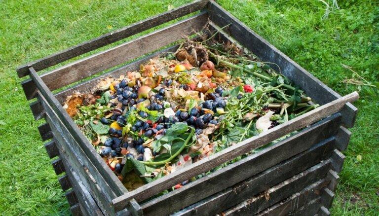 10 неожиданных вещей, которые можно отправить в компост