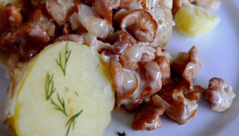 Trīs Latvijas vasaras garšas, trīs receptes vasaras svinēšanai