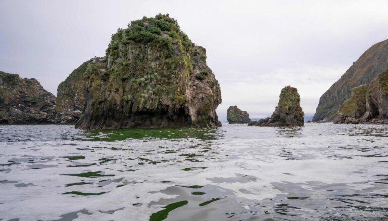 'Greenpeace' brīdina par ekoloģisko katastrofu jūrā pie Kamčatkas pussalas