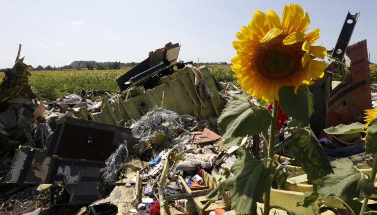 """Независимые эксперты: Россия предъявила неубедительные данные о сбитом """"Боинге"""""""