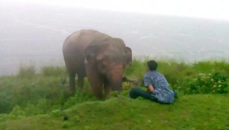 Video: Šrilankā zilonis gandrīz sabradā vīrieti 'kunga prātā'