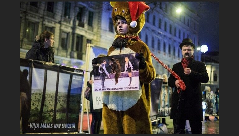 Plāno atkārtotus protestus par nebrīvē dzimušiem dzīvniekiem cirkā