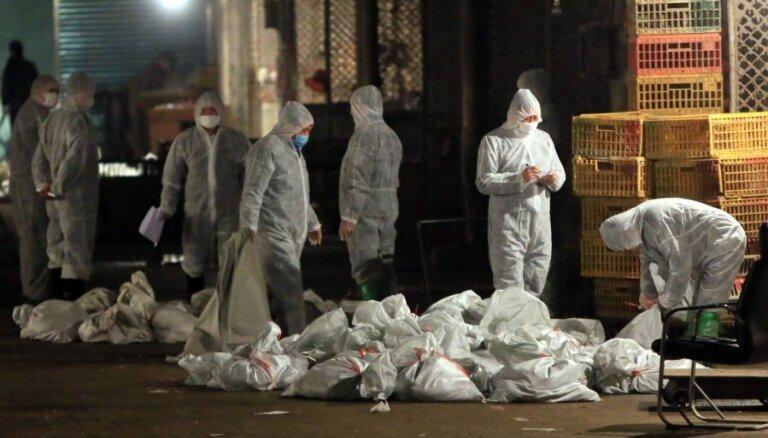 Вспышка патогенного птичьего гриппа в Польше: в Латвию птицы официально не поступали
