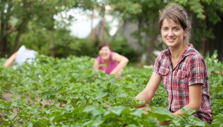Lietas, kas jāzina par bērnu un pusaudžu darbu vasarā