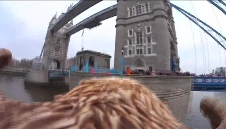 Ērglis ar videokameru nofilmē Londonas skaistākās vietas