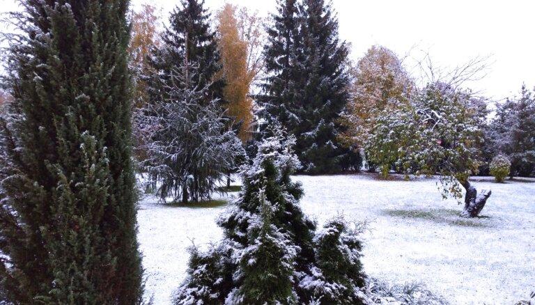 ФОТО: В Цесисе выпал первый снег