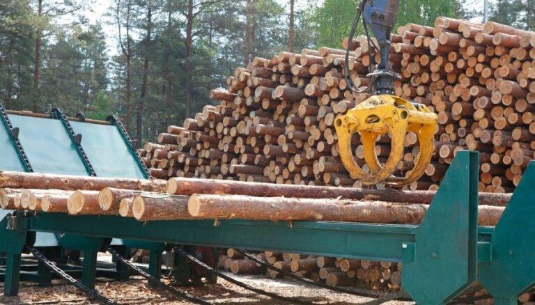 'Rīgas meži' nodarbojas ar nepamatotu un konkurenci kropļojošu uzņēmējdarbību, secina Valsts kontrole