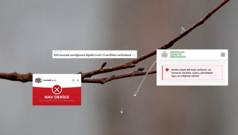 Cehs.lv: Covid sertifikātu nolasīšanā jāiesaista rīkstnieki; IT risinājumi – jāatmet