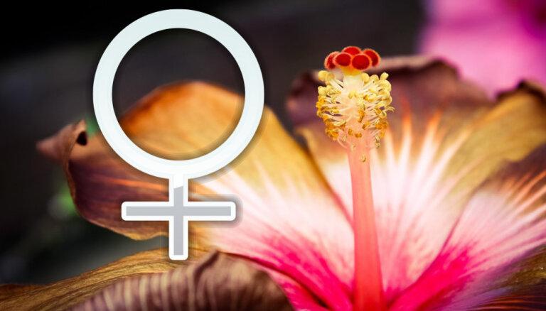 Venera ieiet Strēlniekā: romantikai, partnerattiecībām un naudai būs piedzīvojumu garša