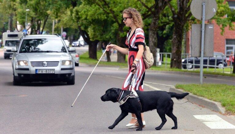 Suns acu vietā: kā apmāca četrkājainos pavadoņus