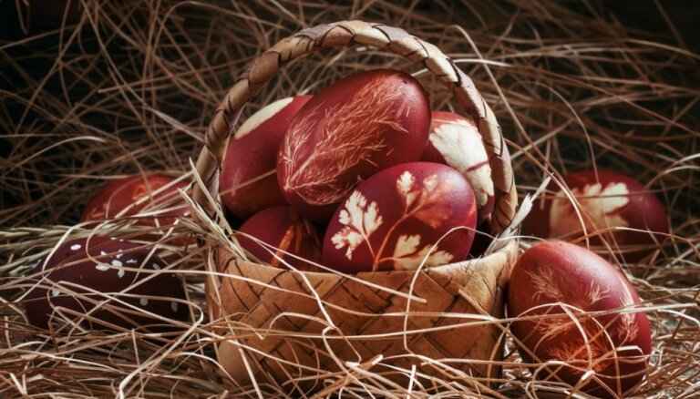 Ola olas galā: kāpēc tās ieteicamas un cik daudz būs par daudz