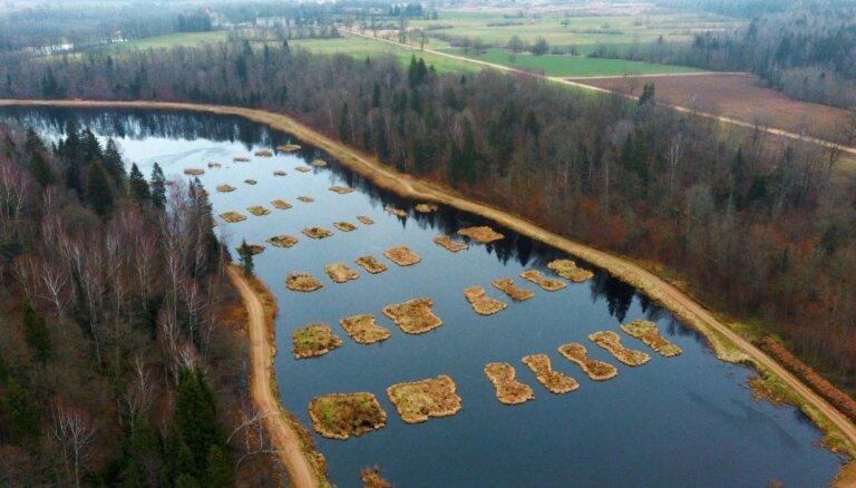 ФОТО. Невероятный пейзаж: уникальный пруд с островами неподалеку от границы Латвии и Литвы