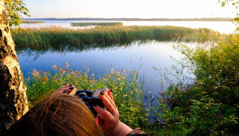 Putnošanas ABC: kur un kā vislabāk nodoties putnu vērošanai