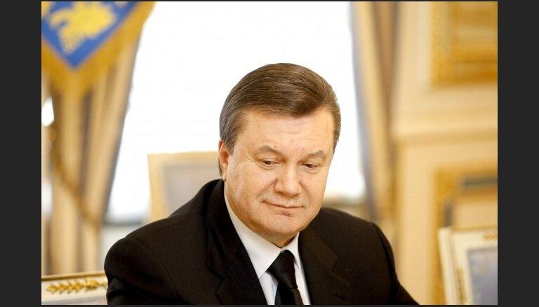 Депутат ЕП: Янукович хотел сидеть на заборе и доить коров из Брюсселя и Москвы