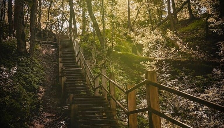 Bezmaksas konference un meistarklases Siguldā dabas un piedzīvojumu terapijas iepazīšanai
