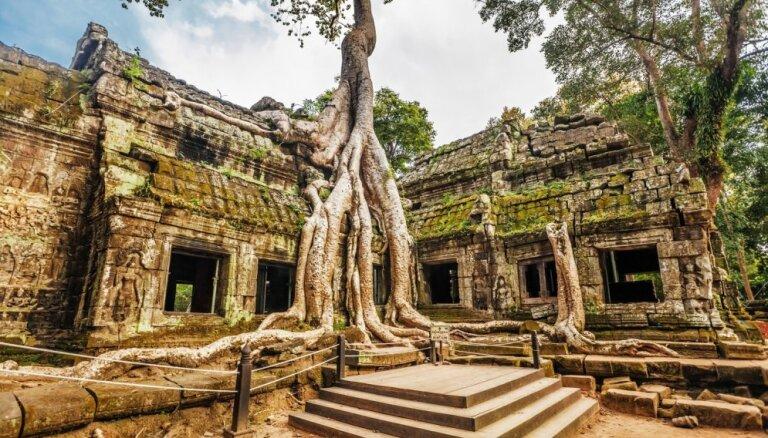 Iespaidīgais templis Kambodžas džungļos, ko ieskāvušas koku saknes