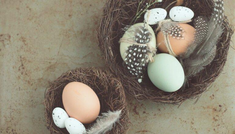 Lieldienu ola: kas tajā vērtīgs un cik daudz ir par daudz?