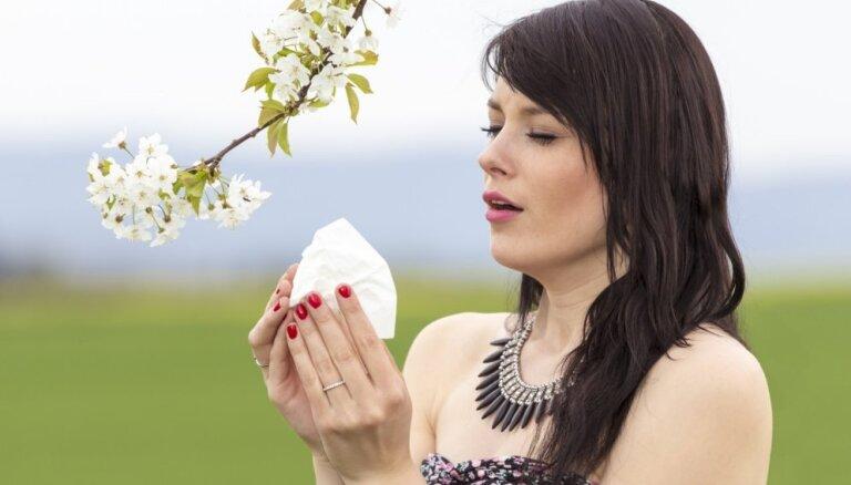 Septiņi būtiski fakti par ziedputekšņu alerģiju
