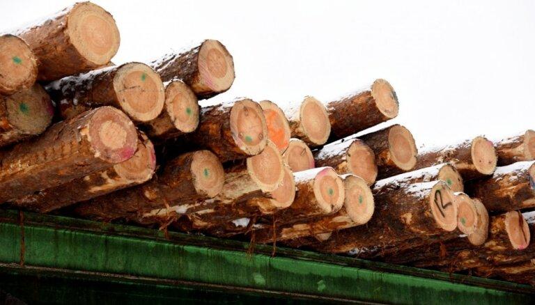 'Ikea' efekts: 'Rīgas meži' pērn par 8,7% audzējuši apgrozījumu