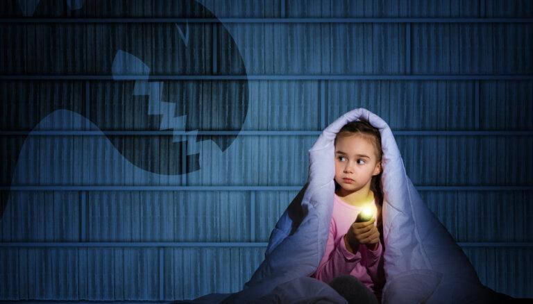 Латвийская IT-индустрия может поглотить и вас, и ваших детей. Вы готовы?