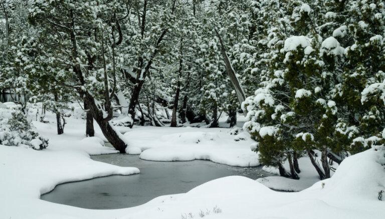 В зимний лес, да с палаткой: Как туристу не замерзнуть на морозе