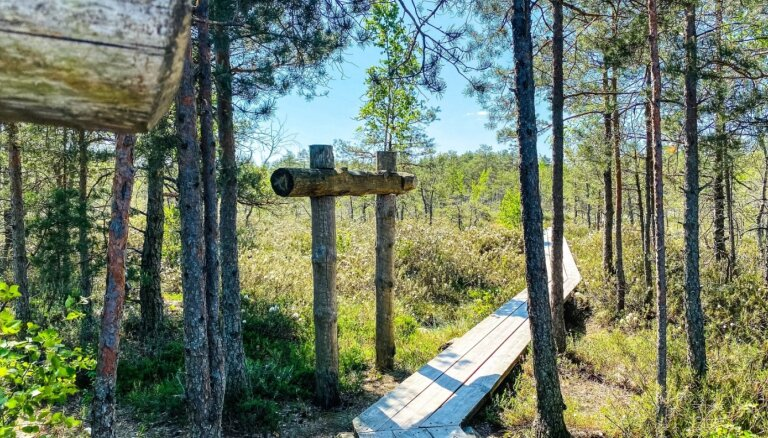 15 природных троп, по которым можно отлично погулять на выходных