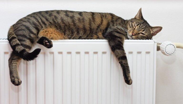 В Rīgas namu pārvaldnieks назвали количество рижских домов с проблемами в системе отопления