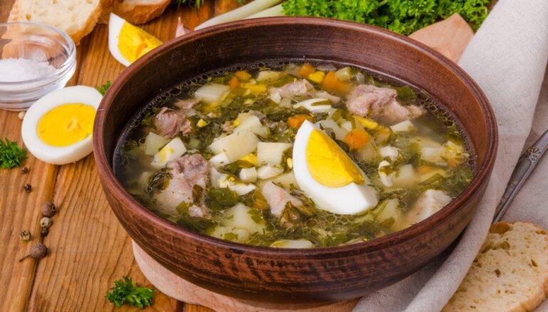 По-весеннему: 8 рецептов щавелевого супа