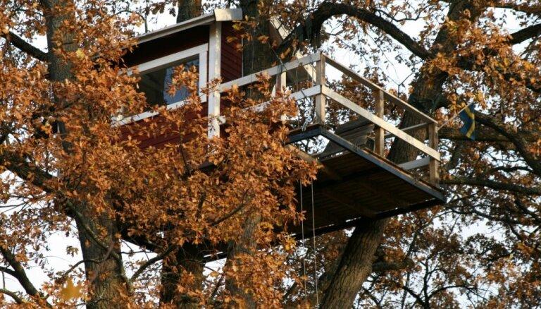 Bērnības sapņu piepildījums – pasakainas mājiņas koku galotnēs