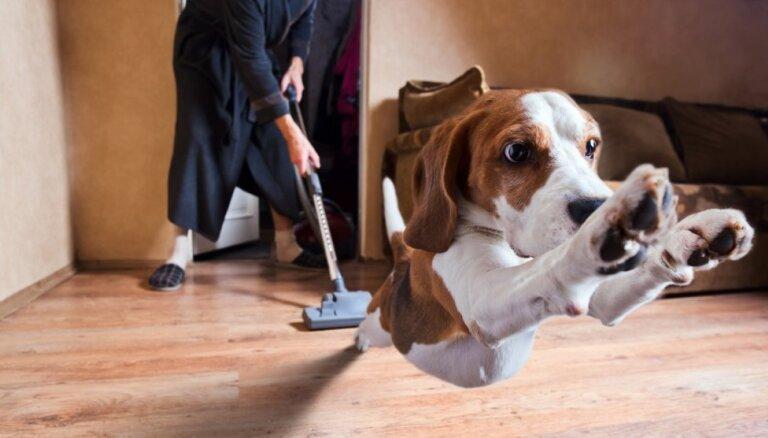 10 мест в доме, которые вы обычно не пылесосите, а должны бы