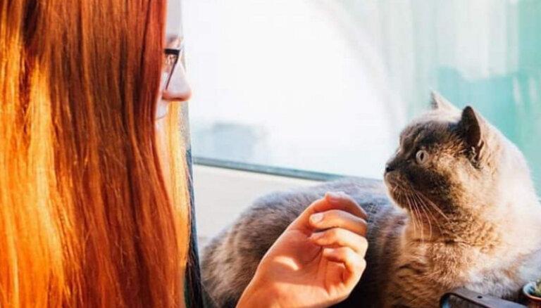 """ВИДЕО. """"Алло, зооняня слушает!"""". Жительница Таллина поделилась секретами своей необычной профессии"""