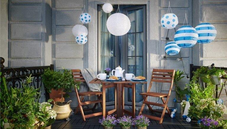 No augu novietošanas līdz mēbelēm: dizaineres padomi dārziņa izveidei uz balkona