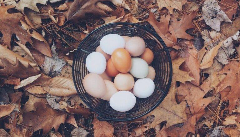 Lai tīra ne tikai miesa, bet arī enerģētiskais lauks! Četri sadzīves rituāli