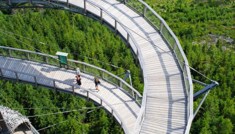 Прогулка над лесом или городом: шесть необычных пешеходных троп на большой высоте