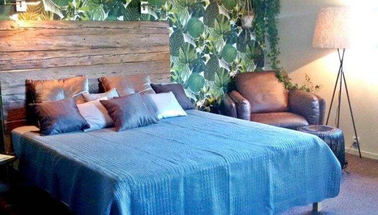 Jauna telpa: eksotiskas pārvērtības guļamistabā ar dabas pieskārienu interjerā