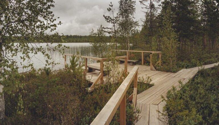 Леса, озера, болота и старая крепость. Пять маршрутов для прогулок по Латгалии