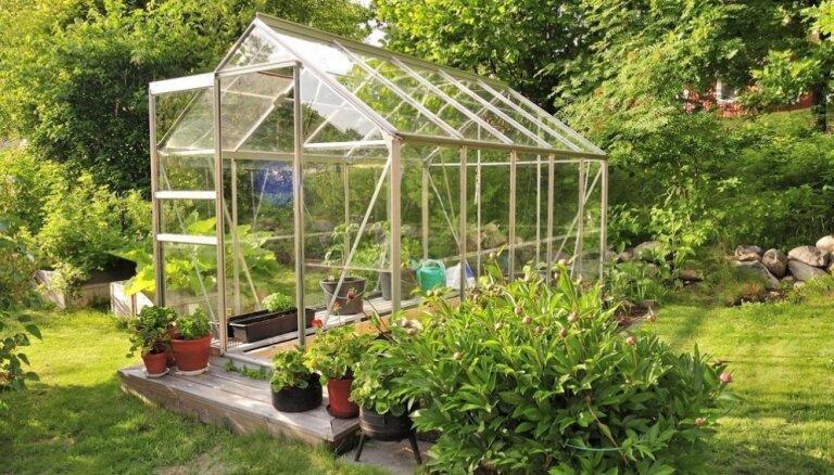 Какую теплицу выбрать: азбука для будущих огородников