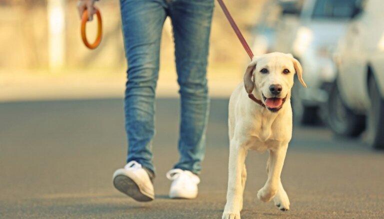 Сколько нужно ходить пешком каждый день для похудения