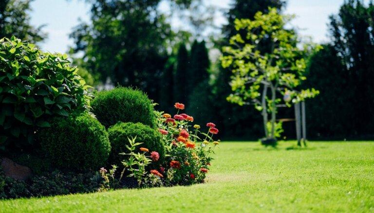 Садовые курсы в июне: полезные лекции и профессиональные курсы