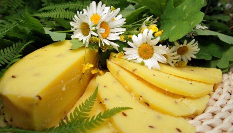 Jāņu siera ražotāji svētkos ievērojamu pieprasījuma pieaugumu nesagaida