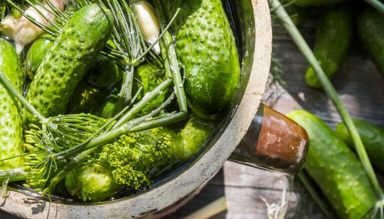 Эксперт: цены на овощи и фрукты упадут на 20 процентов