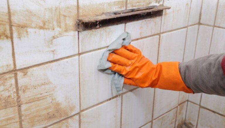 No ieklāšanas līdz efektīvai šuvju mazgāšanai: viss par flīzēm