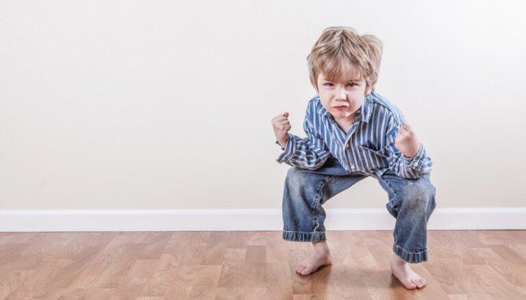 Mazais agresors jeb Kāpēc zēniem patīk kauties