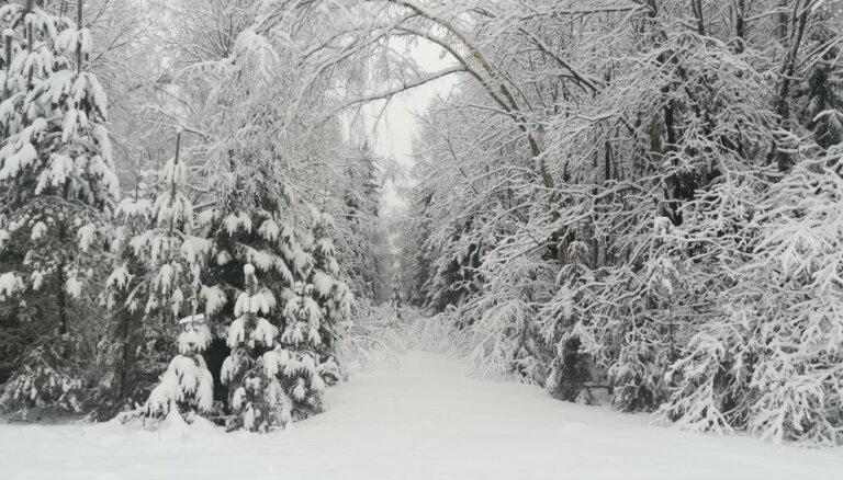 Vairumā gadu Ziemassvētki Latvijā bijuši balti