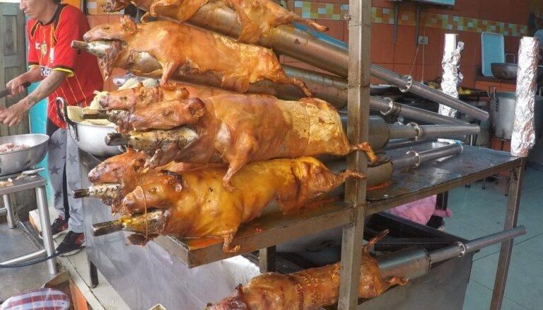 Nogaršo jūrascūciņu! Ceļotāja stāsts par Ekvadoras virtuvi