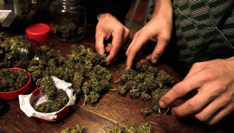 Jaunzēlandē nākamgad notiks referendums par marihuānas legalizāciju