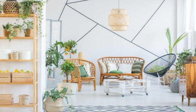 Botāniskais dārzs interjerā – drosmīgas idejas spilgtai dzīves telpai